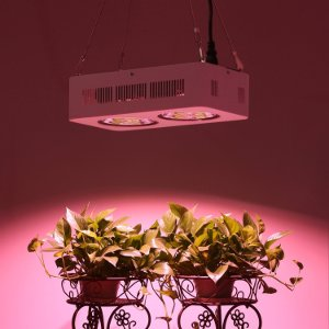 Grow Lampe LED kaufen