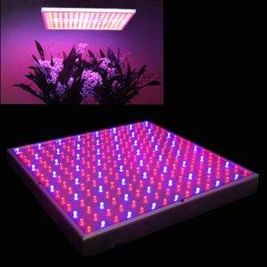 Pflanzen LED Grow Lampe Erfahrung