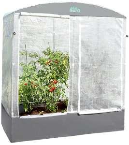 tomatengewaechshaus