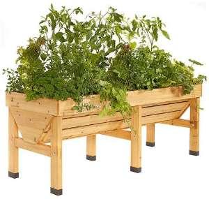 erhoehtes-beet-aus-holz-befuellen-bepflanzen