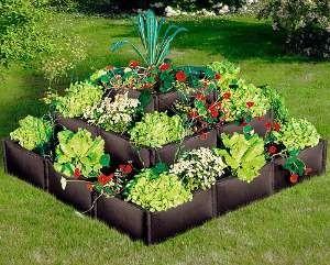 erhoetes pflanzenbeet kaufen oder selber bauen gew chshaus profi. Black Bedroom Furniture Sets. Home Design Ideas