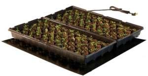heizmatte-fuer-pflanzen
