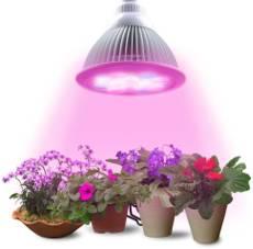 pflanzenlicht wachstumslampen f r pflanzen gew chshaus profi. Black Bedroom Furniture Sets. Home Design Ideas
