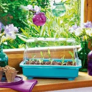 romberg bietet verschiedene moeglichkeiten fuer die anzucht von jungpflanzen gew chshaus profi. Black Bedroom Furniture Sets. Home Design Ideas