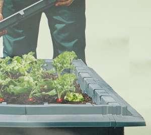 schneckenschutz fuer jungpflanzen von juwel gew chshaus profi. Black Bedroom Furniture Sets. Home Design Ideas